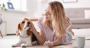 Istraživanje: razumiju li psi svoje vlasnike?